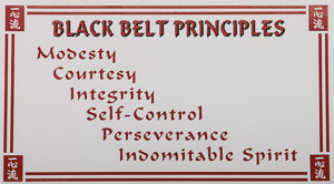 black belt principles