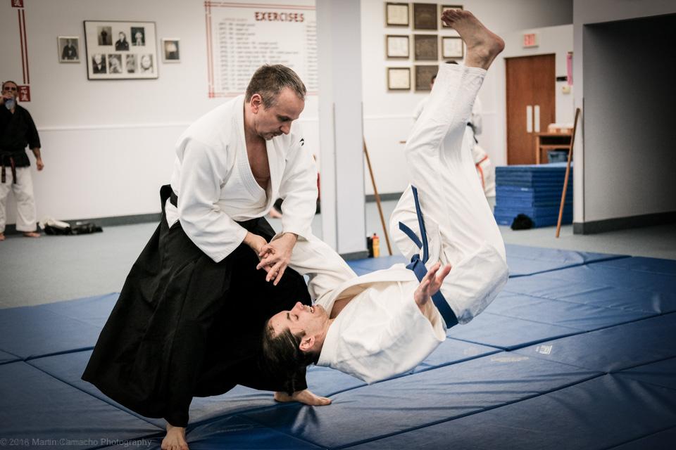 Resultado de imagen de aikido karate